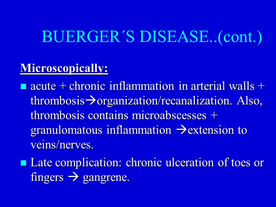 BUERGER´S DISEASE..(cont.) Microscopically: acute + chronic inflammation in arterial walls + thrombosis  organization/recanalization. Also, thrombosi