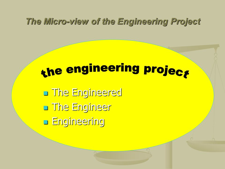 The Micro-view of the Engineering Project The Engineered The Engineered The Engineer The Engineer Engineering Engineering