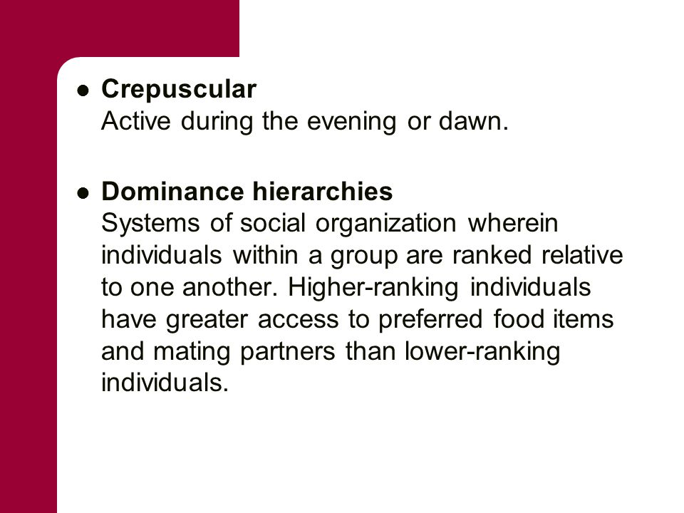 Crepuscular Active during the evening or dawn. Dominance hierarchies Systems of social organization wherein individuals within a group are ranked rela