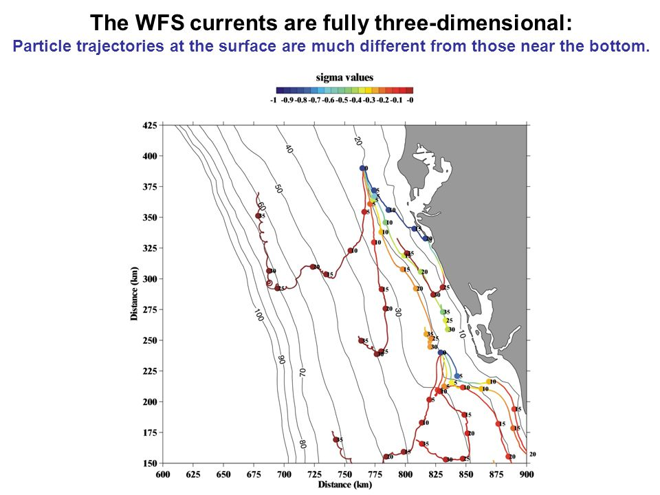 The WFS currents are fully three-dimensional: Particle trajectories at the surface are much different from those near the bottom.
