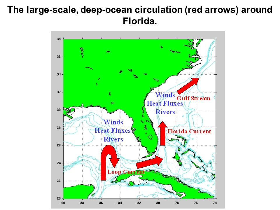 The large-scale, deep-ocean circulation (red arrows) around Florida.