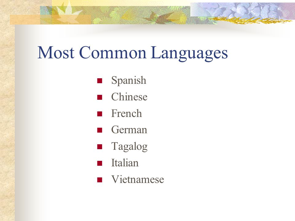 Most Common Languages Spanish Chinese French German Tagalog Italian Vietnamese