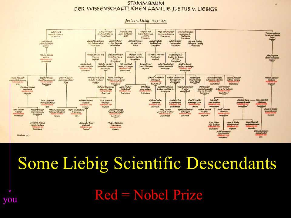 Stammbaum Some Liebig Scientific Descendants Red = Nobel Prize you