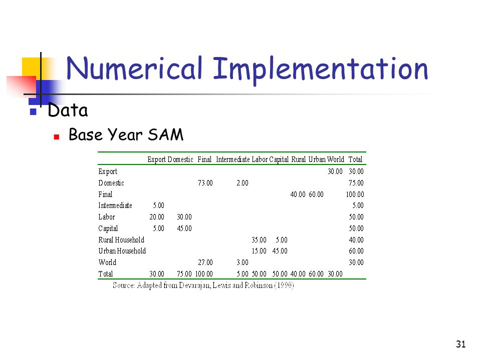 31 Numerical Implementation Data Base Year SAM