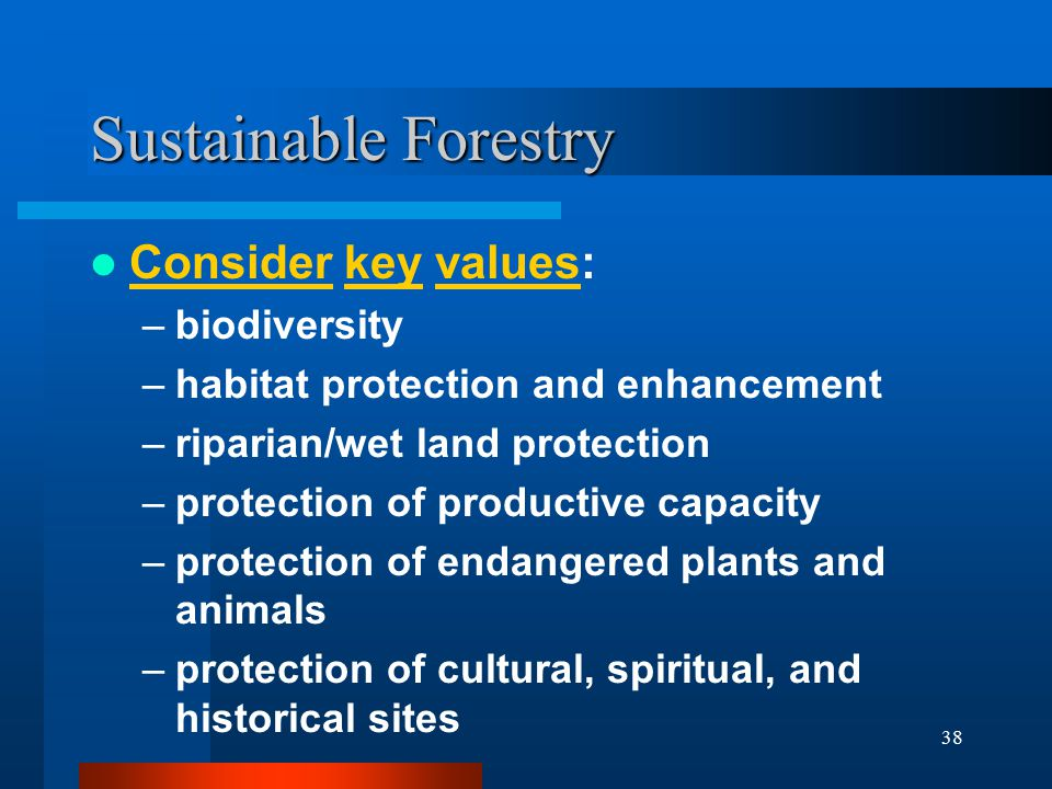 38 Sustainable Forestry Consider key values: –biodiversity –habitat protection and enhancement –riparian/wet land protection –protection of productive capacity –protection of endangered plants and animals –protection of cultural, spiritual, and historical sites