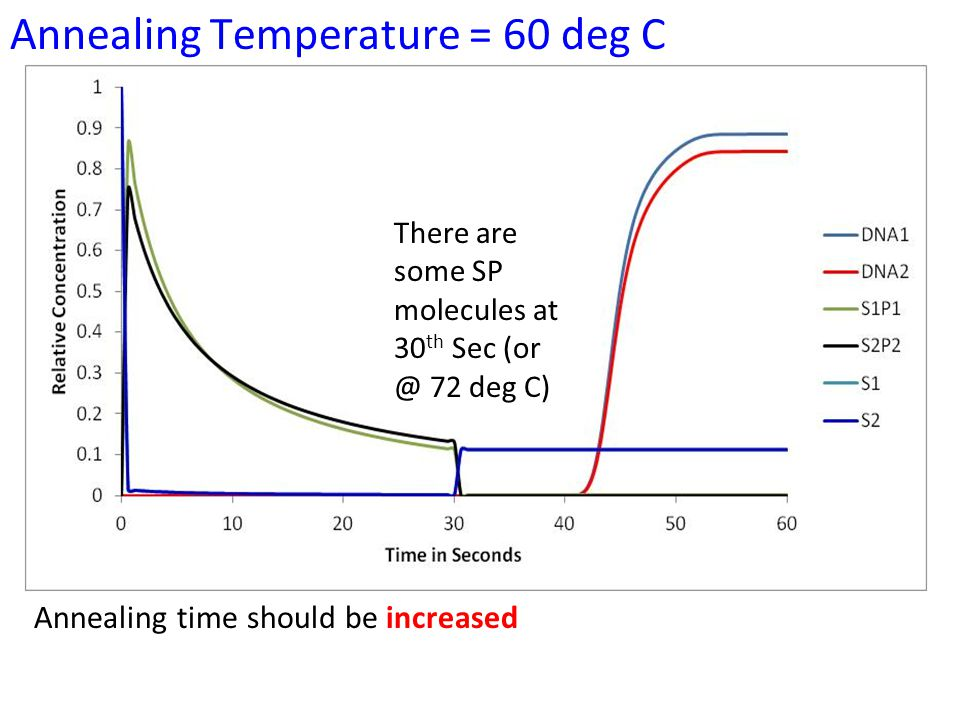 Annealing Temperature = 60 deg C There are some SP molecules at 30 th Sec (or @ 72 deg C) Annealing time should be increased