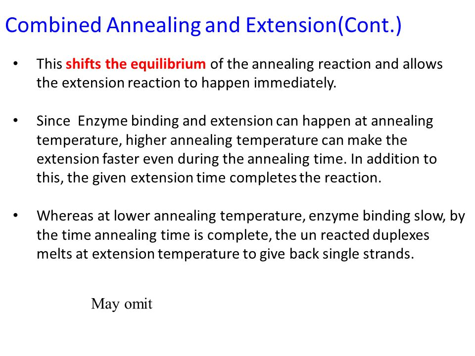 This shifts the equilibrium of the annealing reaction and allows the extension reaction to happen immediately.