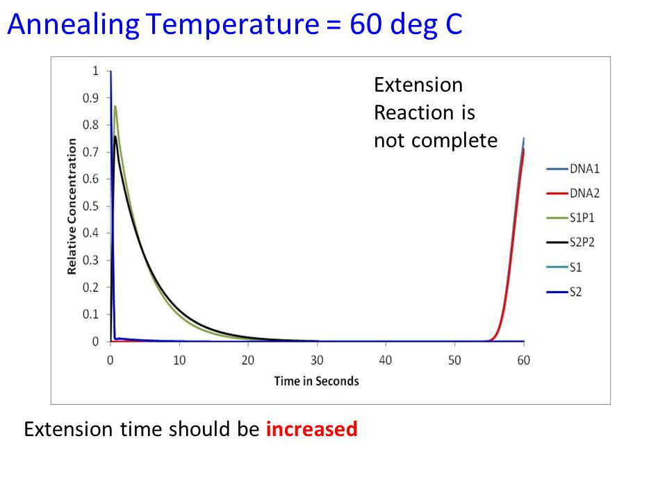 Annealing Temperature = 60 deg C Extension Reaction is not complete Extension time should be increased