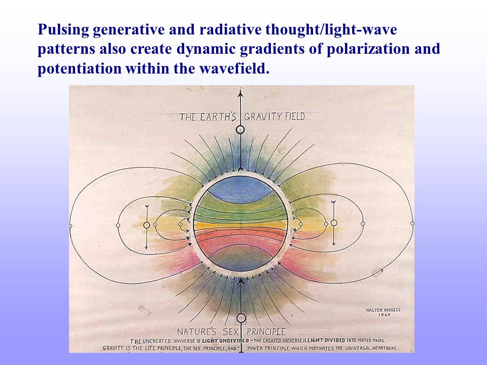 Pulsing generative and radiative thought/light-wave patterns also create dynamic gradients of polarization and potentiation within the wavefield.