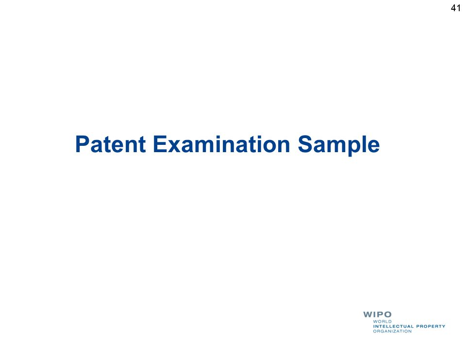 41 Patent Examination Sample