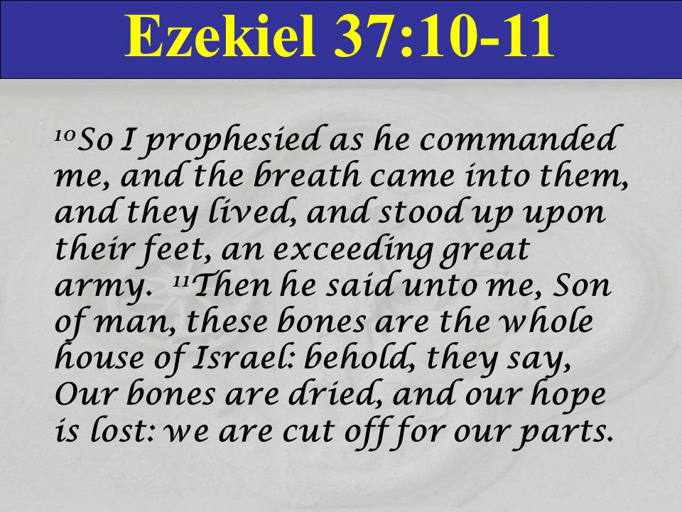 Ezekiel 37:10-11 10 So I prophesied as he commanded me, and the breath came into them, and they lived, and stood up upon their feet, an exceeding great army.