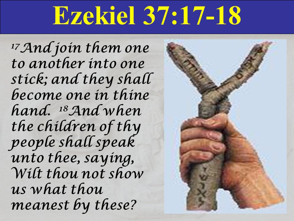 Ezekiel 37: And join them one to another into one stick; and they shall become one in thine hand.