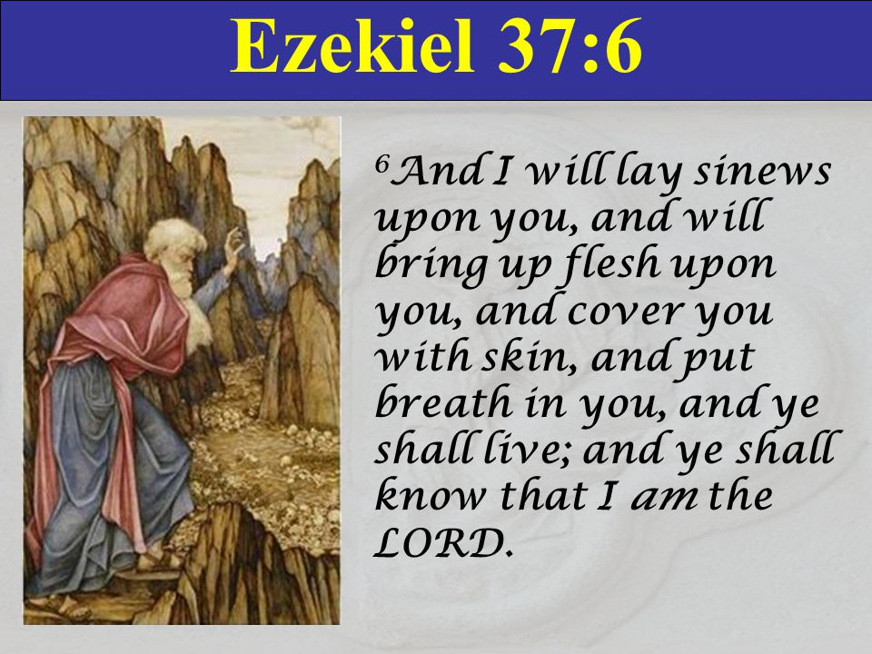 Ezekiel 37:7-8 7 So I prophesied as I was commanded: and as I prophesied, there was a noise, and behold a shaking, and the bones came together, bone to his bone.