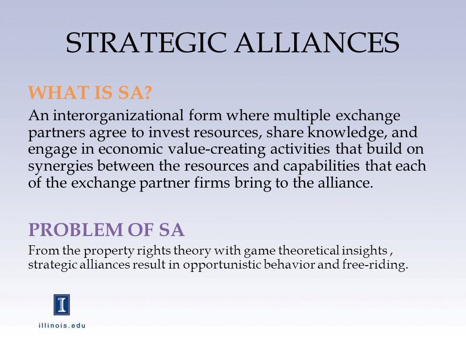 STRATEGIC ALLIANCES WHAT IS SA.