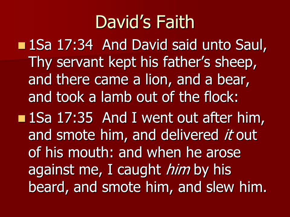 David's Faith 1Sa 17:34 And David said unto Saul, Thy servant kept his father's sheep, and there came a lion, and a bear, and took a lamb out of the flock: 1Sa 17:34 And David said unto Saul, Thy servant kept his father's sheep, and there came a lion, and a bear, and took a lamb out of the flock: 1Sa 17:35 And I went out after him, and smote him, and delivered it out of his mouth: and when he arose against me, I caught him by his beard, and smote him, and slew him.