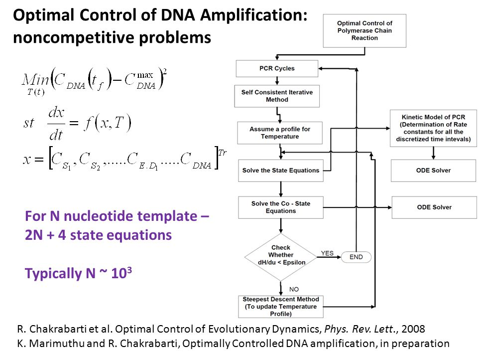 For N nucleotide template – 2N + 4 state equations Typically N ~ 10 3 Optimal Control of DNA Amplification: noncompetitive problems R.