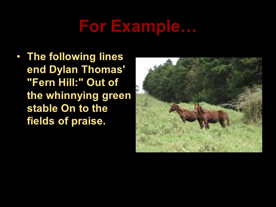 For Example… The following lines end Dylan Thomas'