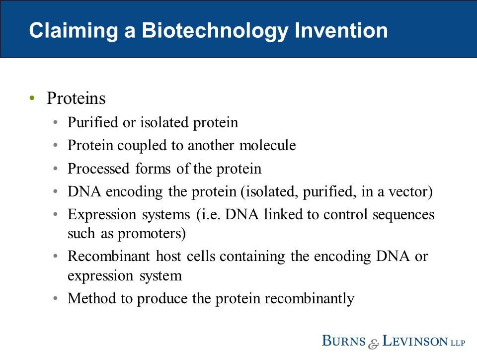Claiming a Biotechnology Invention Proteins Purified or isolated protein Protein coupled to another molecule Processed forms of the protein DNA encoding the protein (isolated, purified, in a vector) Expression systems (i.e.