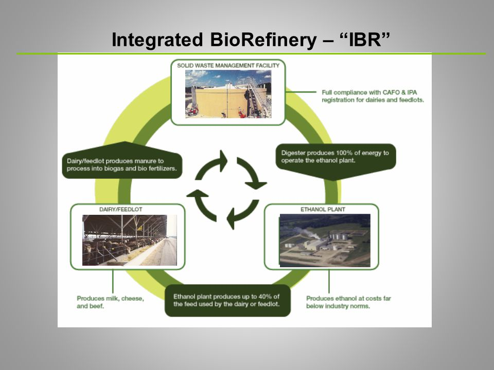 IBR Operating Cost Advantages  The IBR system will reduce key production costs, allowing it to be a lower cost producer of ethanol  Energy cost should be reduced because natural gas (the second largest cost component) will be replaced by methane gas produced from cattle waste in the AD  Net grain cost (the largest production cost component of ethanol) should be reduced  the output from grain fermentation (wet stillage) will be used as cattle feed on the adjacent cattle operation without the additional cost to dry the stillage and transport it  IBR Qualifies for Industrial Revenue Bond (IRB) Financing
