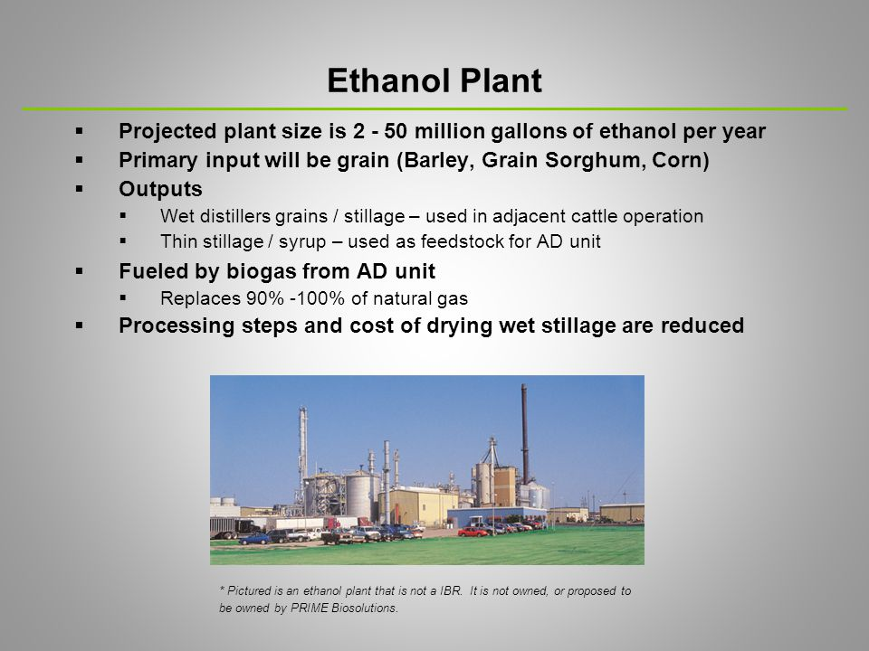  Adjacent cattle operation – confined beef production  Cattle operation uses wet stillage output of ethanol plant  Cattle waste moved to AD to produce methane gas Cattle Operation