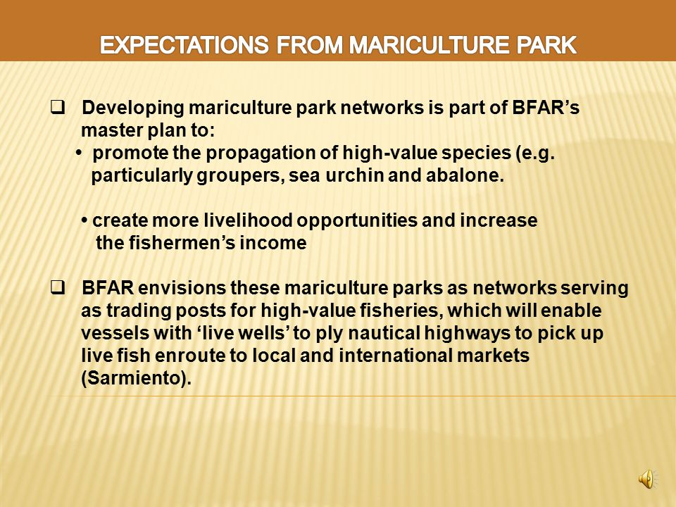  Developing mariculture park networks is part of BFAR's master plan to: promote the propagation of high-value species (e.g.