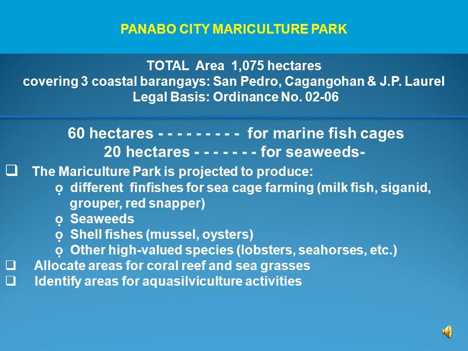 TOTAL Area 1,075 hectares covering 3 coastal barangays: San Pedro, Cagangohan & J.P.