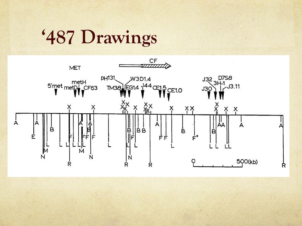 '487 Drawings