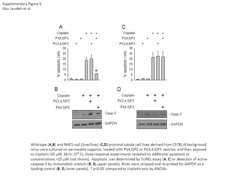 Supplementary Figure 5 Abu Jawdeh et al.