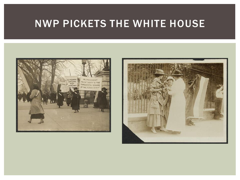 NWP PICKETS THE WHITE HOUSE