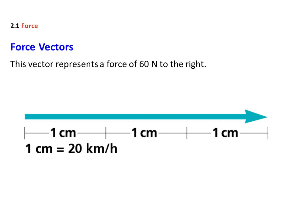 Force Vectors This vector represents a force of 60 N to the right. 2.1 Force