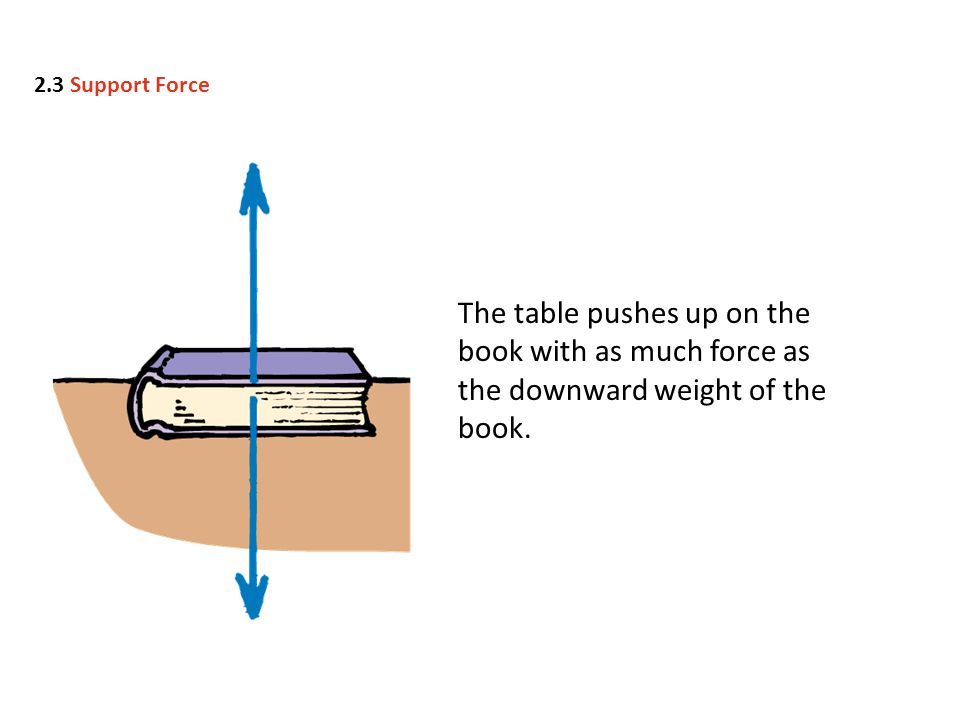 The table pushes up on the book with as much force as the downward weight of the book.