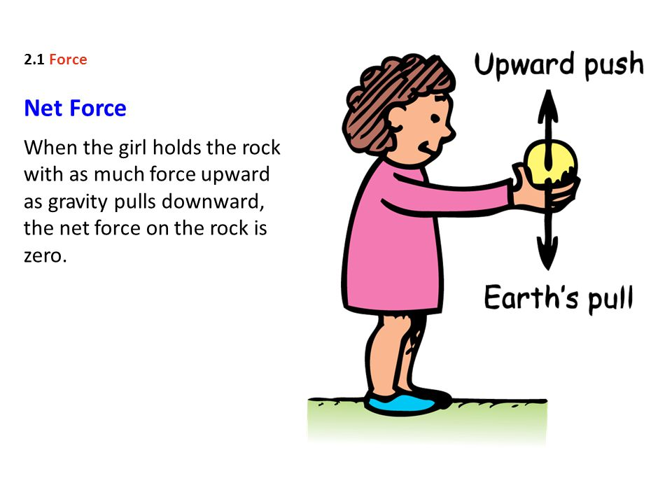 Net Force When the girl holds the rock with as much force upward as gravity pulls downward, the net force on the rock is zero.