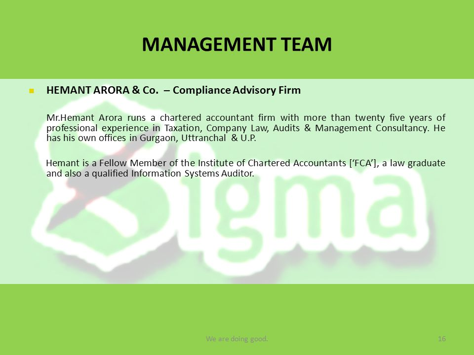 MANAGEMENT TEAM HEMANT ARORA & Co.