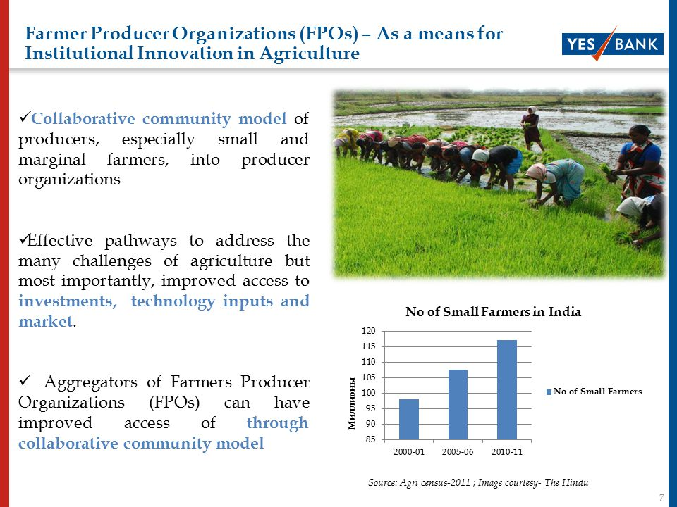 7 Farmer Producer Organizations (FPOs) – As a means for Institutional Innovation in Agriculture Agri –cooperatives They have been successful in spreading education and awareness Results are not remarkable in case of Credit access & Business viability for medium and long term.