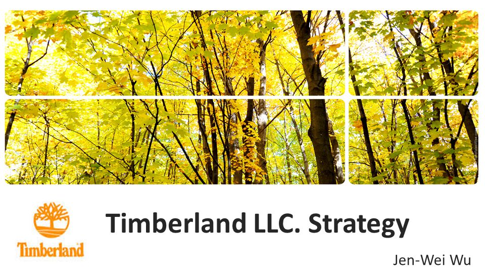 Timberland LLC. Strategy Jen-Wei Wu