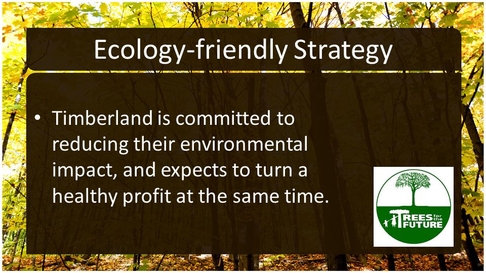 Ecology-friendly Strategy Timberland is committed to reducing their environmental impact, and expects to turn a healthy profit at the same time.