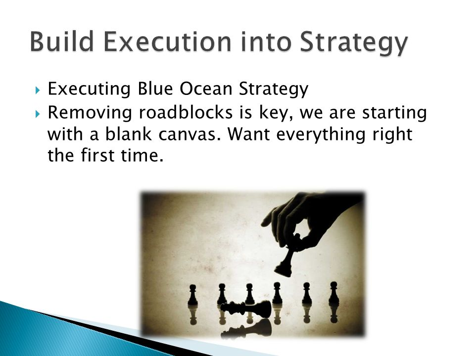  Executing Blue Ocean Strategy  Removing roadblocks is key, we are starting with a blank canvas. Want everything right the first time.