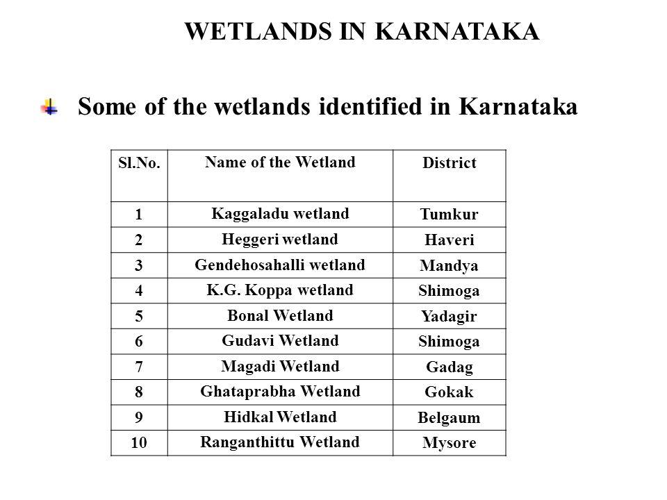 WETLANDS IN KARNATAKA Some of the wetlands identified in Karnataka Sl.No.