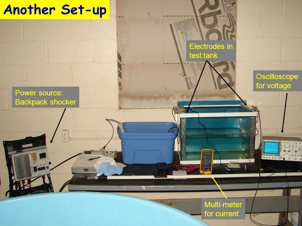 Power source: Backpack shocker Electrodes in test tank Oscilloscope for voltage Multi-meter for current Another Set-up