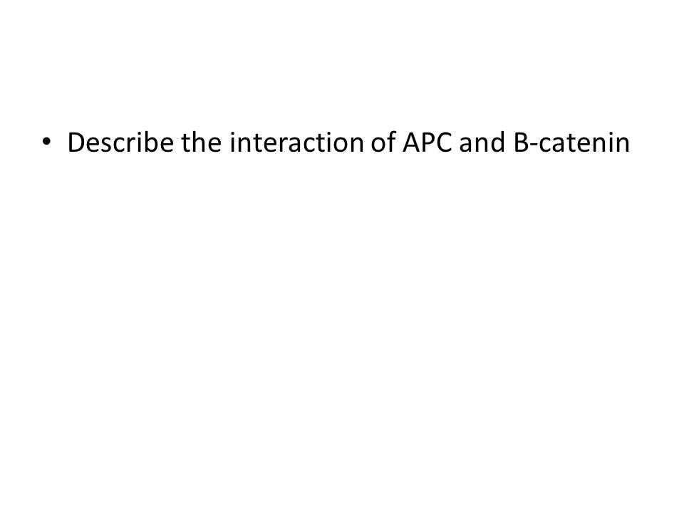 Describe the interaction of APC and B-catenin