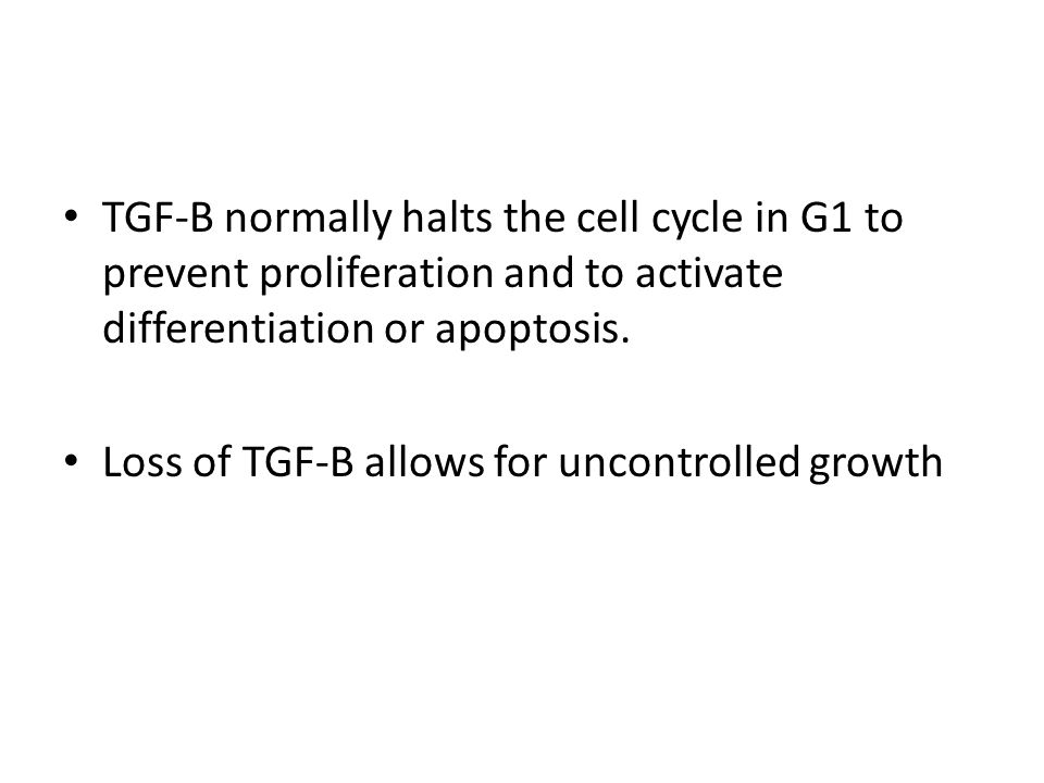 TGF-B normally halts the cell cycle in G1 to prevent proliferation and to activate differentiation or apoptosis. Loss of TGF-B allows for uncontrolled
