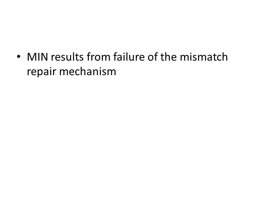 MIN results from failure of the mismatch repair mechanism