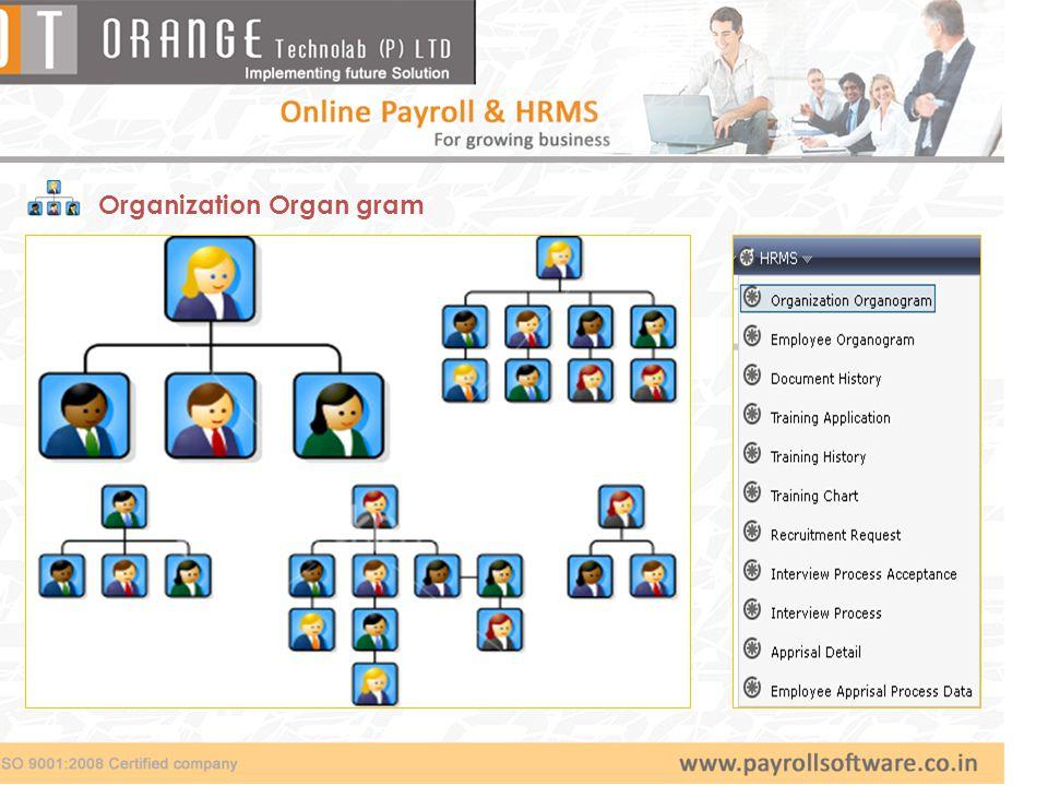 Organization Organ gram
