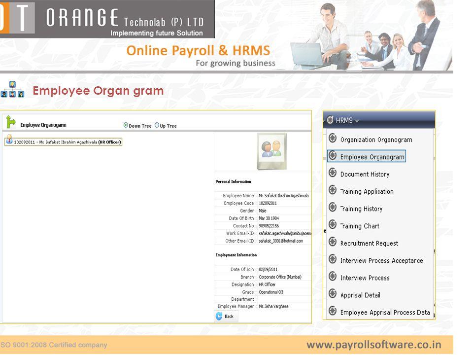 Employee Organ gram