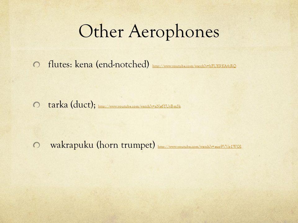 Other Aerophones flutes: kena (end-notched) http://www.youtube.com/watch?v=bFUK9KA4zRQ http://www.youtube.com/watch?v=bFUK9KA4zRQ tarka (duct); http:/