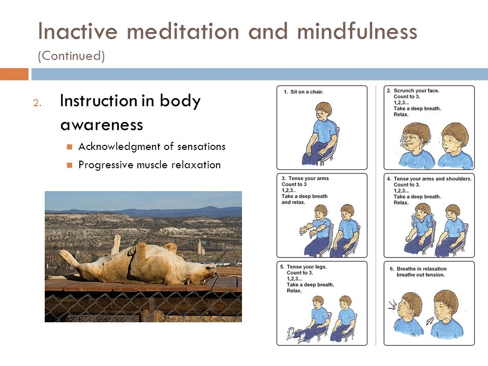 2. Instruction in body awareness Acknowledgment of sensations Progressive muscle relaxation Inactive meditation and mindfulness (Continued)