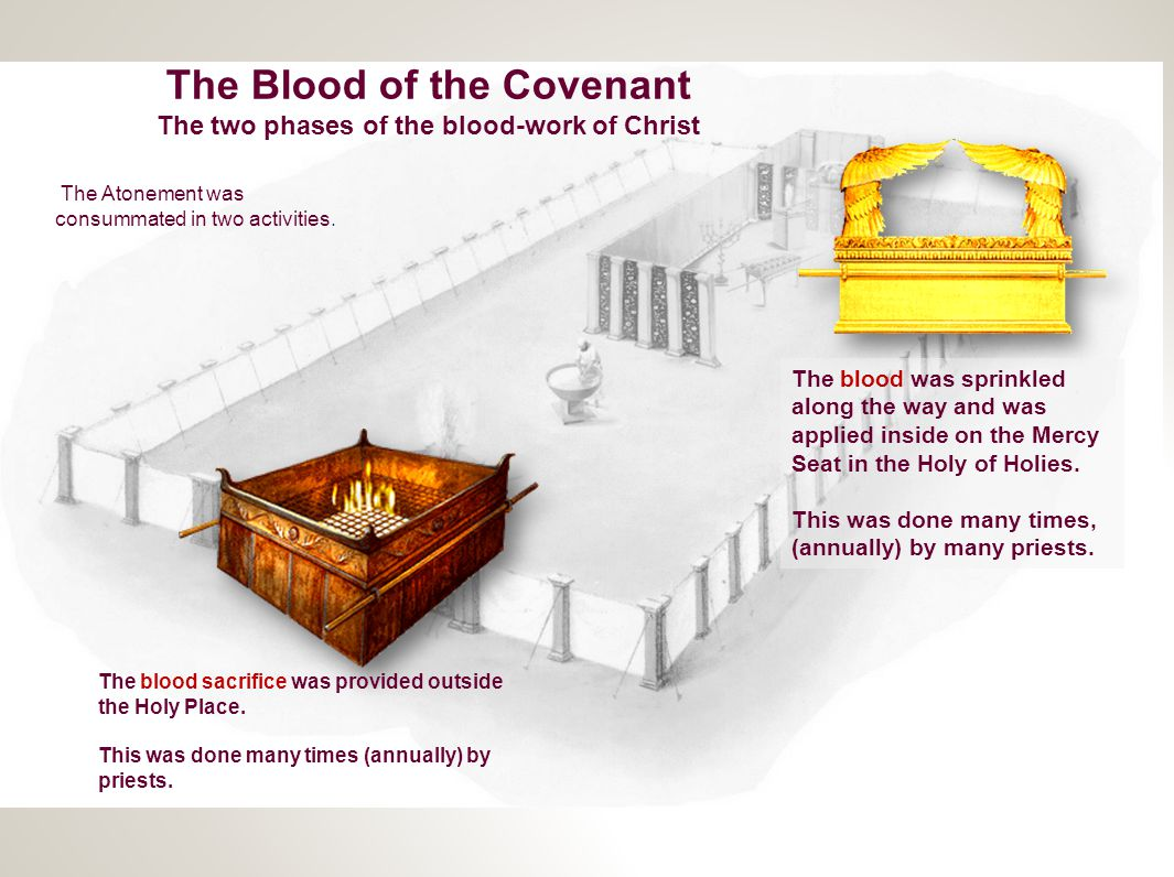 The Blood of the Covenant The two phases of the blood-work of Christ The Atonement was consummated in two activities. The blood sacrifice was provided