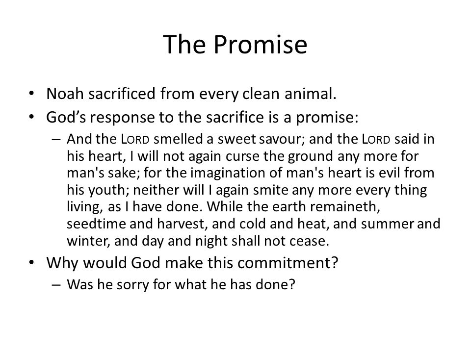 The Promise Noah sacrificed from every clean animal.