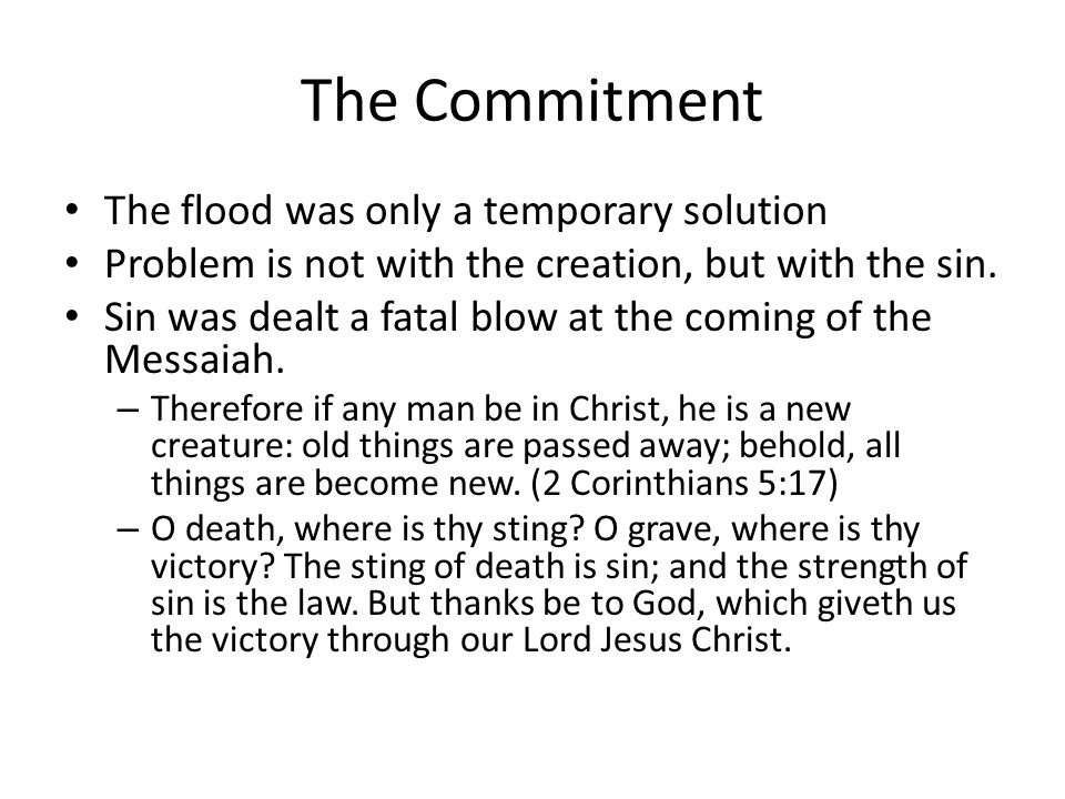 The Commitment The flood was only a temporary solution Problem is not with the creation, but with the sin.