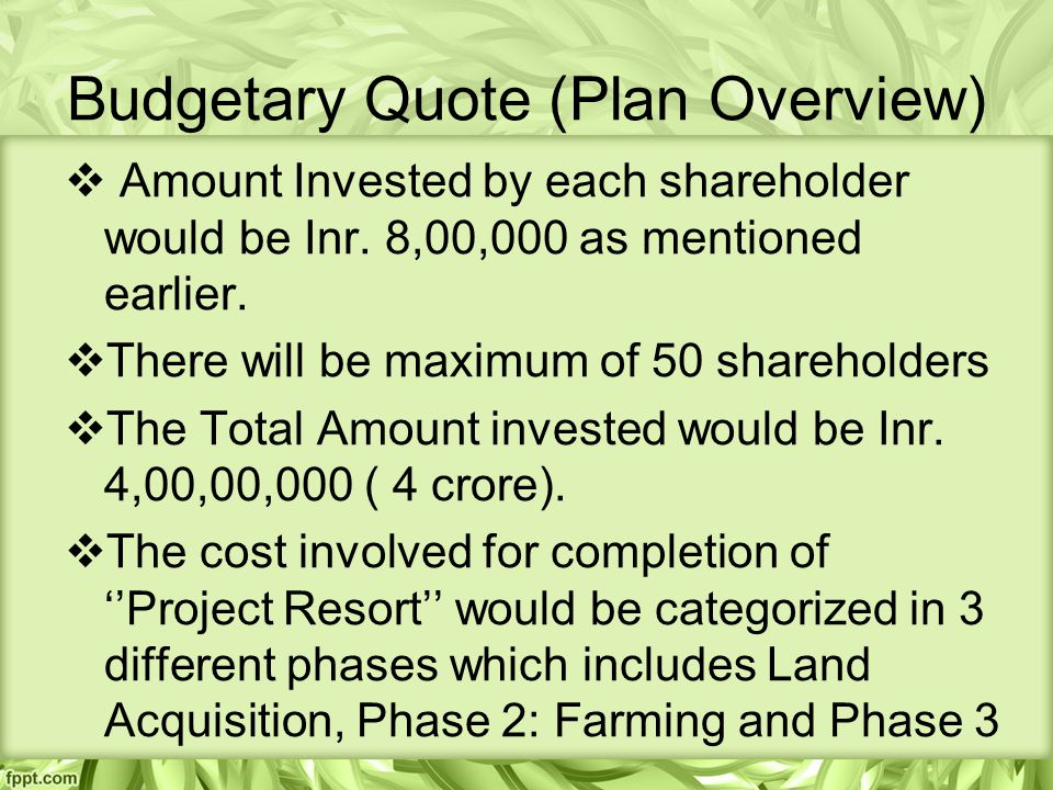 Budgetary Quote (Plan Overview)  Amount Invested by each shareholder would be Inr.